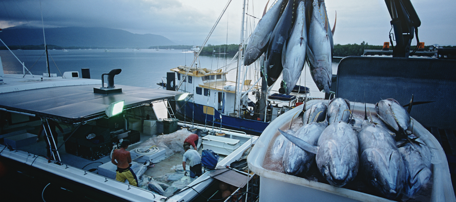 Fisheries_02